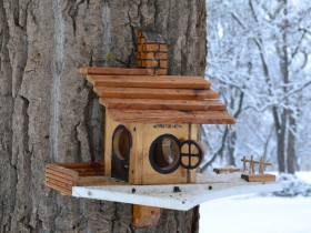 The design of the house for squirrels