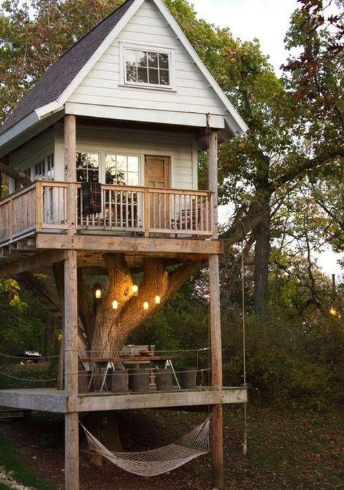 Видео дома на деревьях своими руками