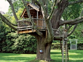 Beautiful design of the tree house