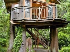 Самодельный детский домик на дереве