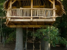 A tree house with a swing for two