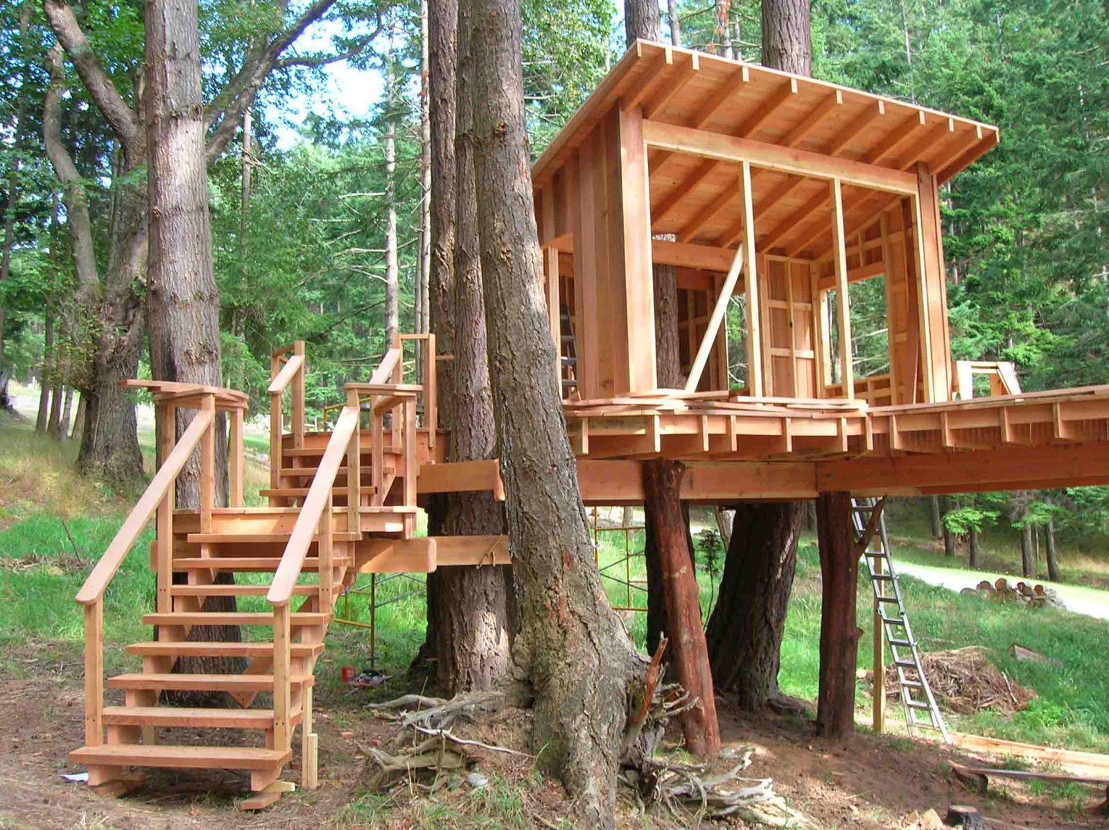 Как делать домик на дереве фото