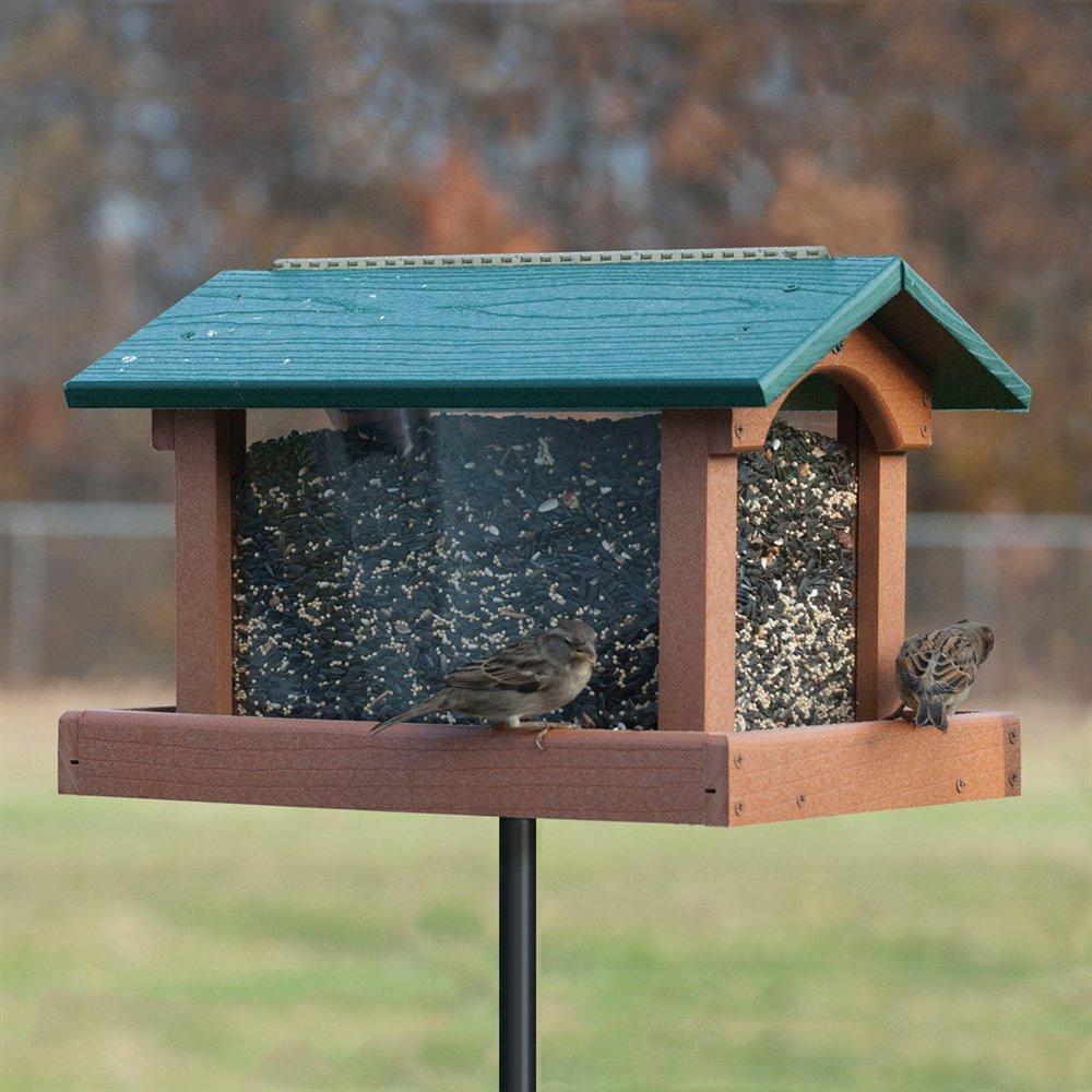 Как сделать съедобную кормушку для птиц фото 417