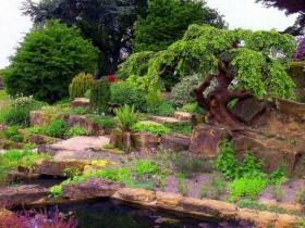 Горный склон в садовом участке