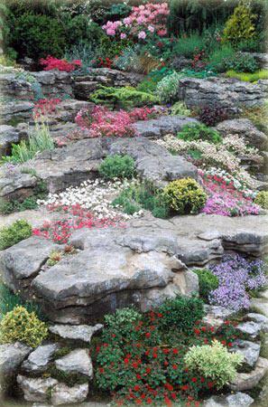 Оформление каменного сада в стиле «Горной долины»