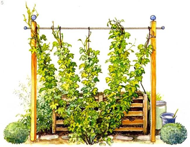 Украшение компостных куч растениями