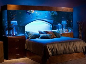Beautiful aquarium above the bed in the bedroom