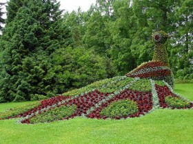 Идея озеленения сада