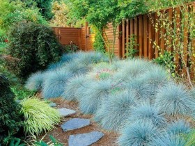 Idea landscaping garden