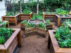 Идея оформления дачного огорода