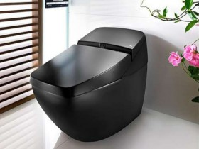 The toilet in the style of hi-tech