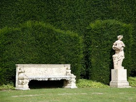 The hedges in the Italian garden