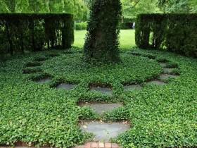 Озеленение итальянского сада