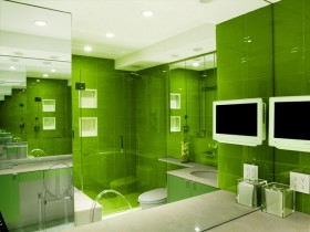 Bathroom bright green color