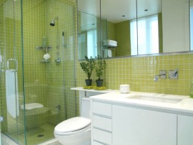 Bathroom green color