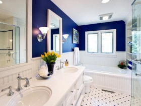 The combination of white with blue interior bathroom