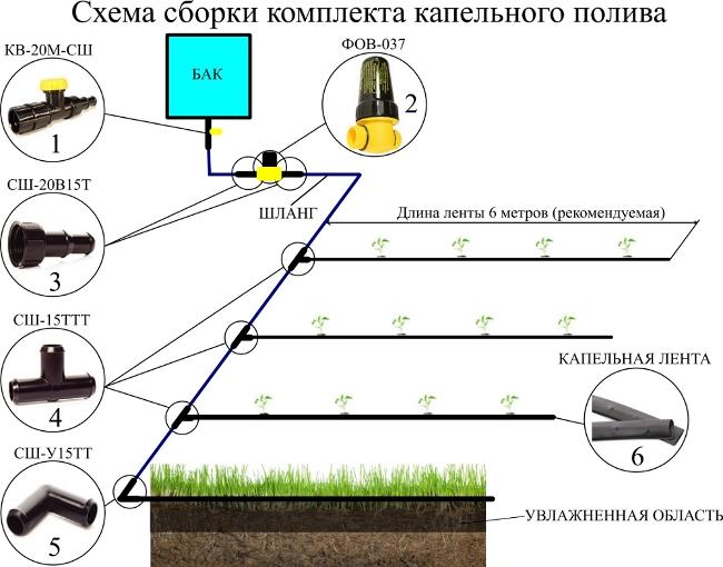 Составляющие элементы системы капельного полива растений