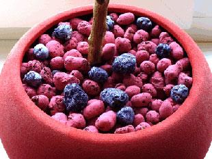 Керамзит для комнатных растений