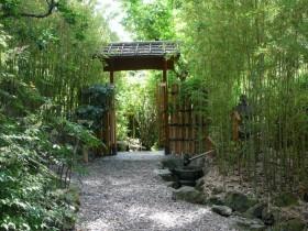 Decor Chinese garden
