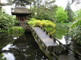Garden bridge in Chinese style