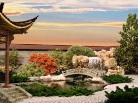 Китайский сад своими руками