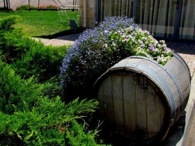 Garden bed from an old barrel