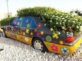 Idea of design of flower beds in an old car