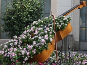 Flowerbed in the shape of a guitar
