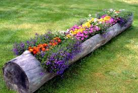 Creative flowerbed with their hands