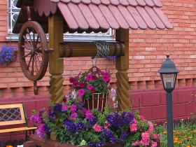 Russian well with flowers