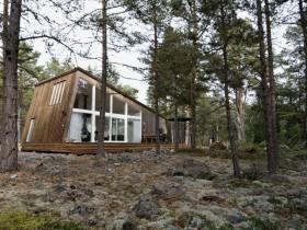 Дызайн драўлянага катэджа ў лесе