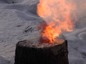 Burning of the stump