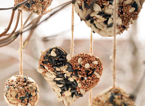 Съедобные подвесные кормушки для птиц из семян семечек подсолнуха, тыквы, гречки, овсянки.