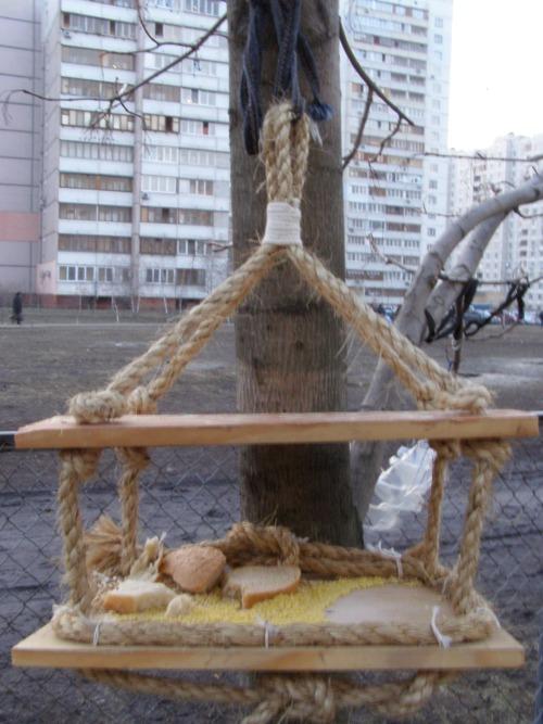 Оригинальные кормушки своими руками для птиц фото