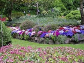 Украшение сада многолетними кустарниками
