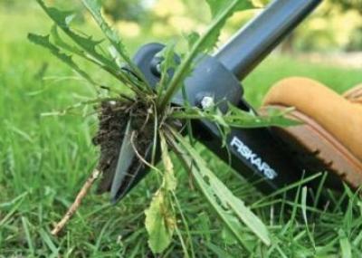 Удаление сорняков вручную