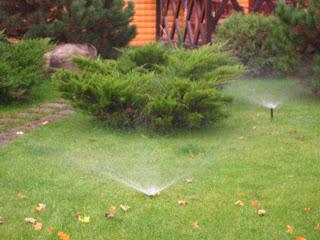 Автоматический полив растений