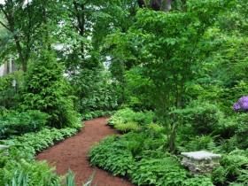 Лесной садовый стиль