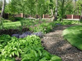 Сад в лесном стиле