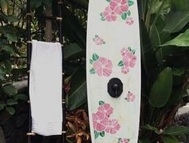 Yoz surfboards dan dush