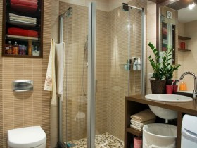 Shower stall in small bathroom