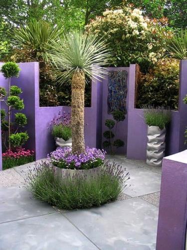 Растительный мир минимализма