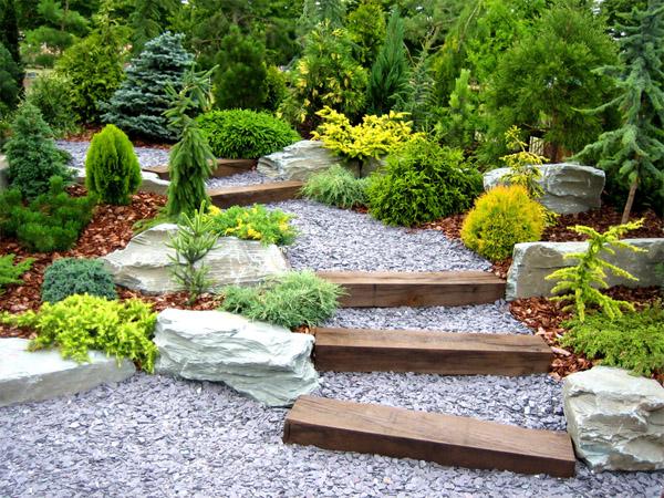 Растительный мир модернистского сада