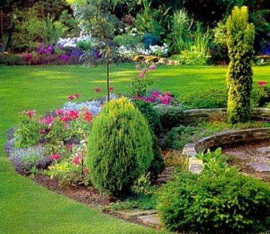 "Цветы и кустарники ""модернистского сада"""