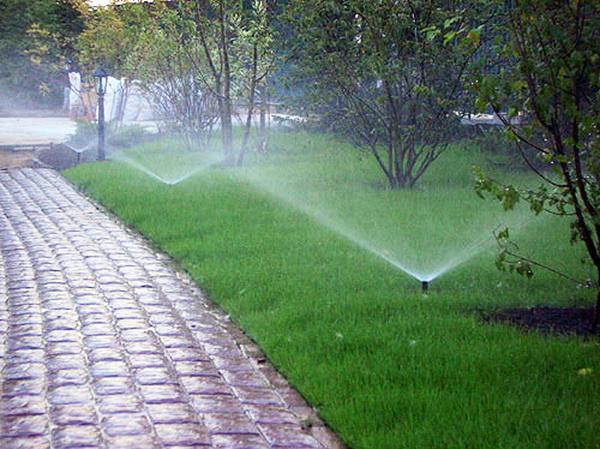 Автоматический полив в неприхотливом саду