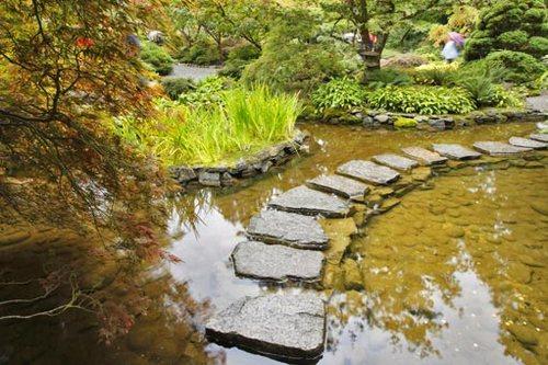 Каменные садовые дорожки в неприхотливом саду