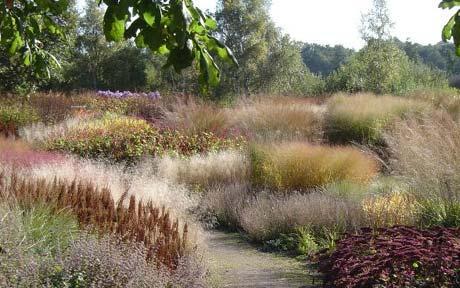 Природный садовый стиль