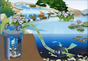 интернет-магазин «Водный мир»