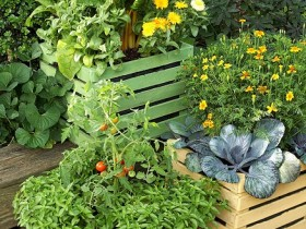 Create a container garden on the front of the house