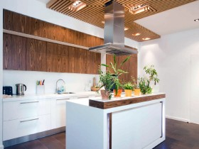 Bright kitchen with cooking island